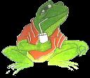 Sr. Frog's chacras